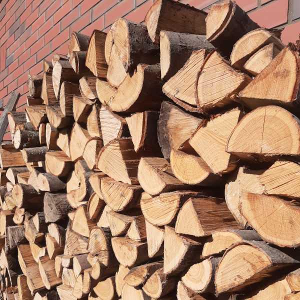 dřevo sušené